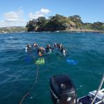 Descending for last dive