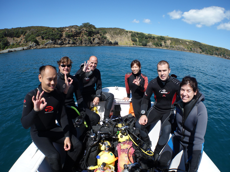 Diving at Tawharanui Marine Reserve