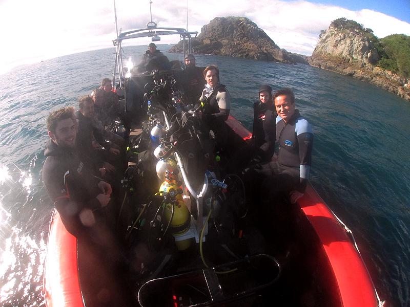 Diving Wooded Island at Tiri Tiri Matangi