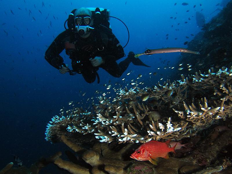 Richard cruising the reefs on his Hollis Explorer rebreather.