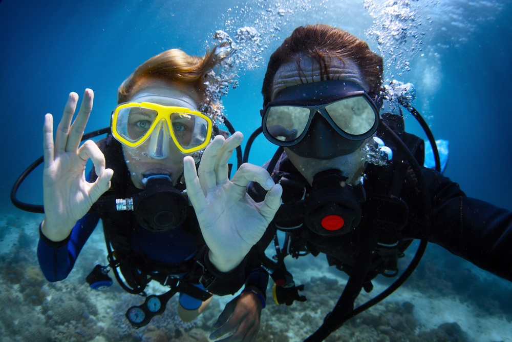Kiwi Scuba Divers - Learn to Dive – Open Water Courses