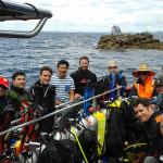 Taranga Island