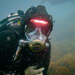 OceanReef Predator